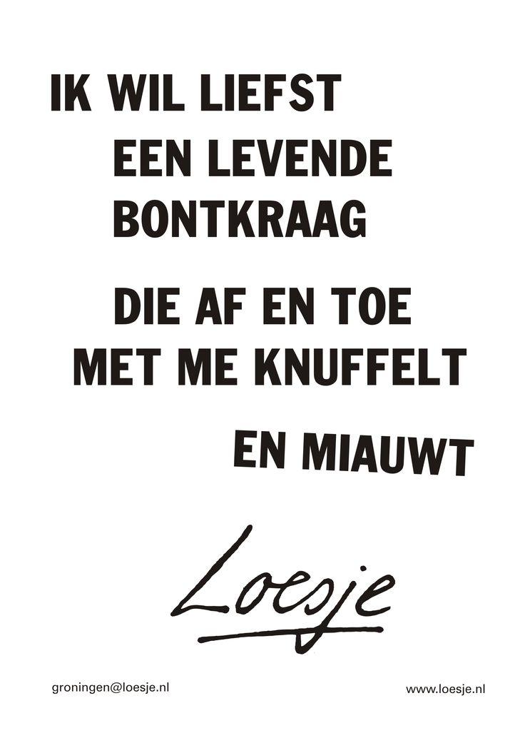 ik wil liefst een levende bontkraag die af en toe met me knuffelt en miauwt #Loesje