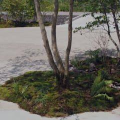 Jardines de estilo asiático de 空庭