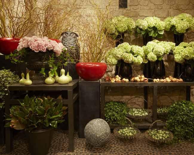 Les 25 meilleures idées de la catégorie Magasins de fleurs ...