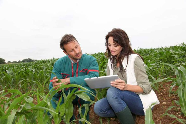 How to Become an Agricultural Engineer | EnvironmentalScience.org