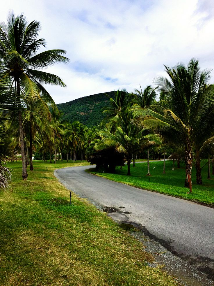 Why you should stay at Thala Beach QLD just 15 minutes from the centre of Port Douglas.