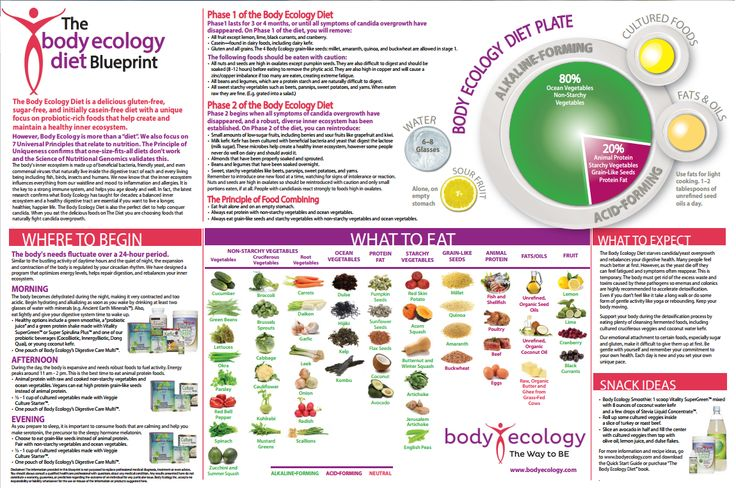 Body Ecology Diet and its core principles