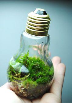 20+ Awesome DIY Ideas For Recycling Old Light Bulbs.  #homedesigns #recyclingodlbulbs #lightdesigns  For real estate marketing tips and advice visit inboundrem.com