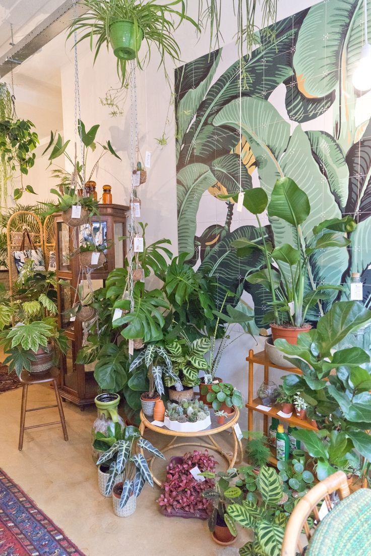 piante shop