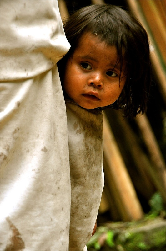 Timid Curiosity by Valerie Rosen A 1 year old Kogi girl hides behind her mother, peering out with great curiosity. Sierra Nevada Mountains, Colombia.