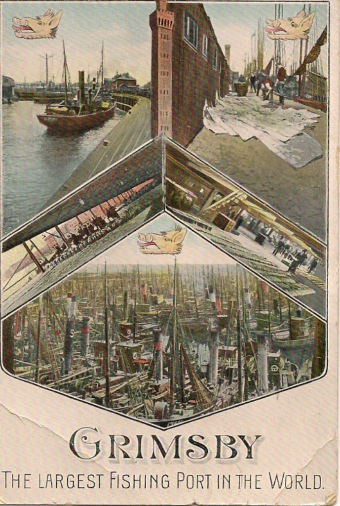 Grimsby Docks 1908 -1 Large.jpg 689×1,024 pixels Visit regalfish.co.uk for more information on the quality products and service we offer.