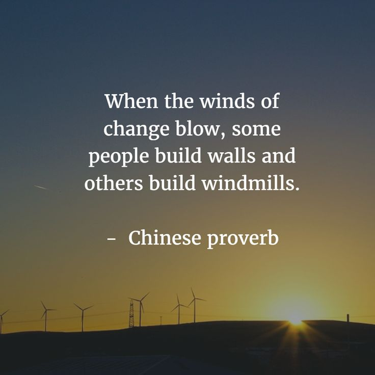 """""""When the winds of change blow, some people build walls and other build windmills"""