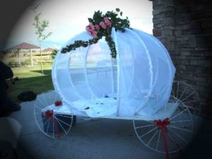 19 best utah wedding decorations rentals images on pinterest white knight wedding dcor we have one of the largest varieties of wedding reception backdrops junglespirit Images