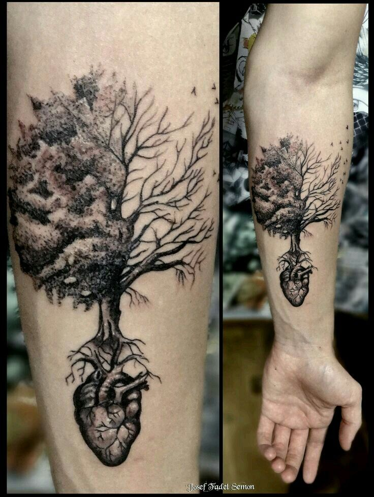 Pin by Christopher Roberts on tattau Tree tattoo forearm
