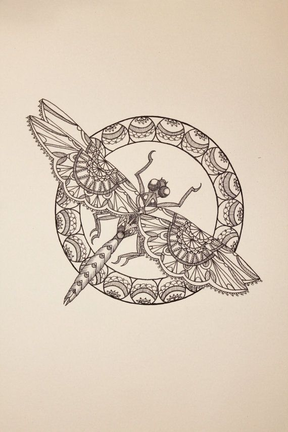 'Lace Dragonfly II' drawing on paper by Jodi Brown via WetCanvasArt on Etsy.