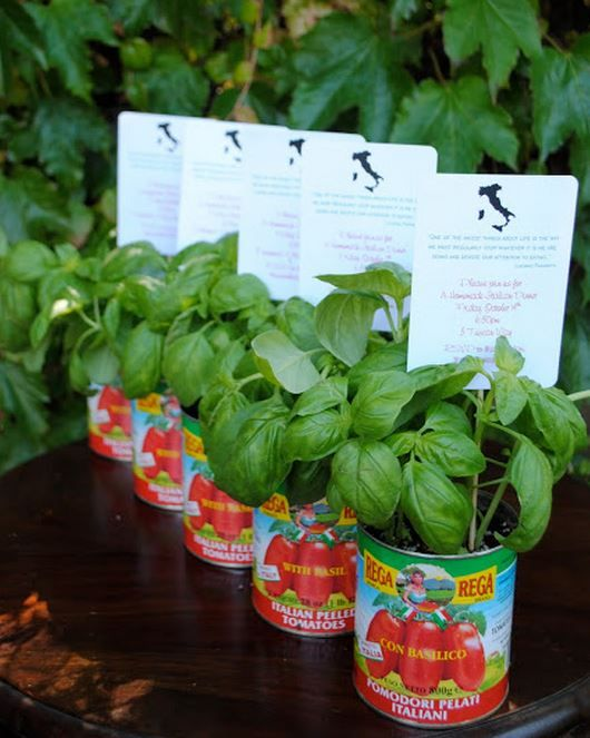 Love the basil in tomato cans