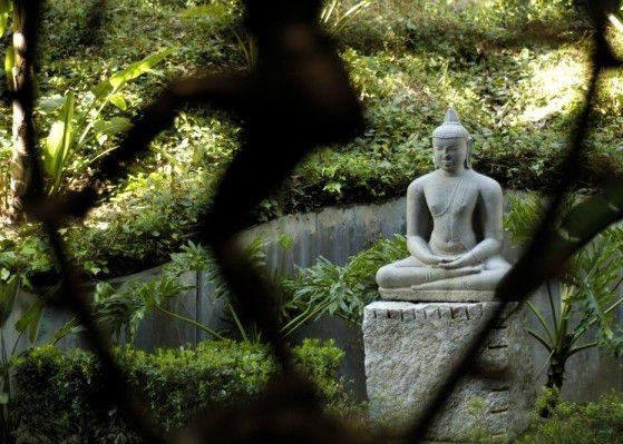 Yoga Meditation & Ayurvedic Retreat at