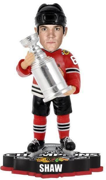 Andrew Shaw Chicago Blackhawks 2015 NHL Stanley Cup Final Champions Player Trophy Bobblehead