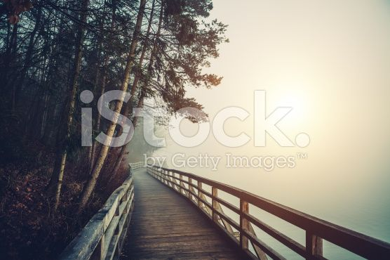 Path By The Lake royalty-free stock photo