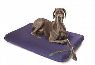 Owners of large dogs benefit from the MacTurriff beds as you never put the mattress in the washing machine. Everyone looking for a large dog bed will find the ideal solution in a MacTurriff Waterproof Dog Bed™, for comfort, ease of maintenance and durability. This bed: $208.00 (XL with Navy Twill cover)