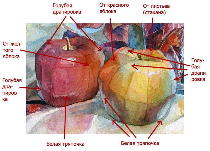 Как нарисовать натюрморт поэтапно фото Сайт о рисовании