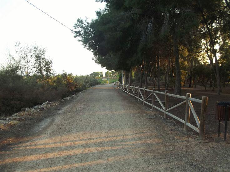 (3) Walking a new way.