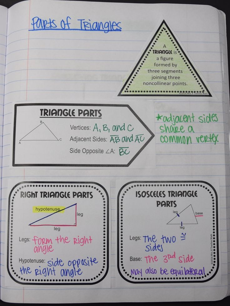 Classifying Triangles Interactive Notebook Page - parts of triangles