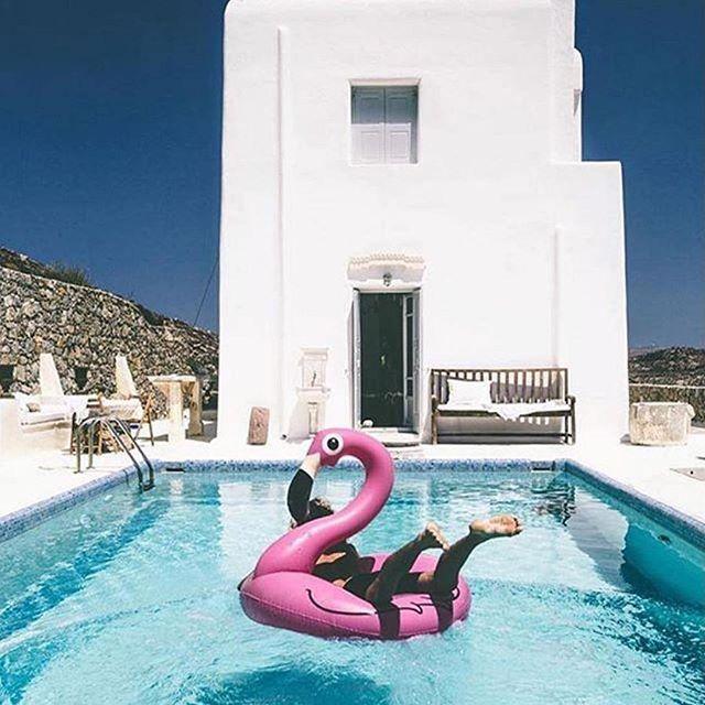 Goals  #flamingo #flamingofloat #pink #happy #Perthlife #inflatables #staypositive #floatie #beachlife #travel # #westisbest #perthisok #summer #Perth #australia #westernaustralia #wanderlust #beach #water #ocean #summervibes #goodvibes #potd #sun #beautiful #fun #love #moodygrams #instagood