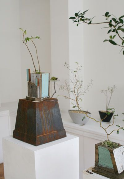 Yasuhito Higashine        My favorite things, ceramics (and metal and wood and glass) and plants!