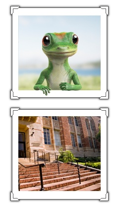 Geico Car Quote Entrancing 32 Best Mascots Geico Images On Pinterest  Geckos Chameleon And . Review
