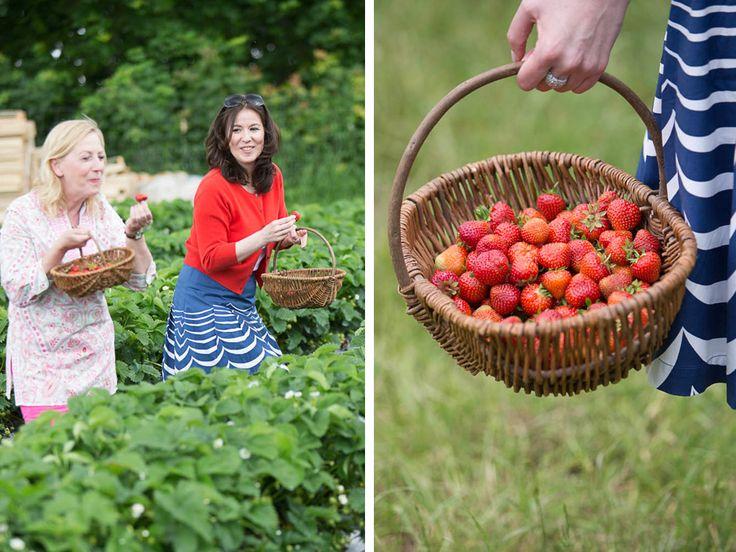 Warum Brigitte Erdbeeren so gerne selbst pflückt – und wie sich die knallroten Früchte in den besten Sommerkuchen der Welt verwandeln. http://www.fuersie.de/kitchen-girls/tipps/blog-post/erdbeeren-selber-pfluecken