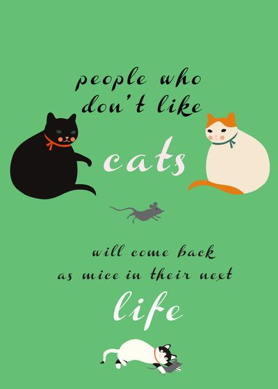 by Elisandra   people who don't like cats will come back as mice in their next life. Make sure that you are kind to cats!!