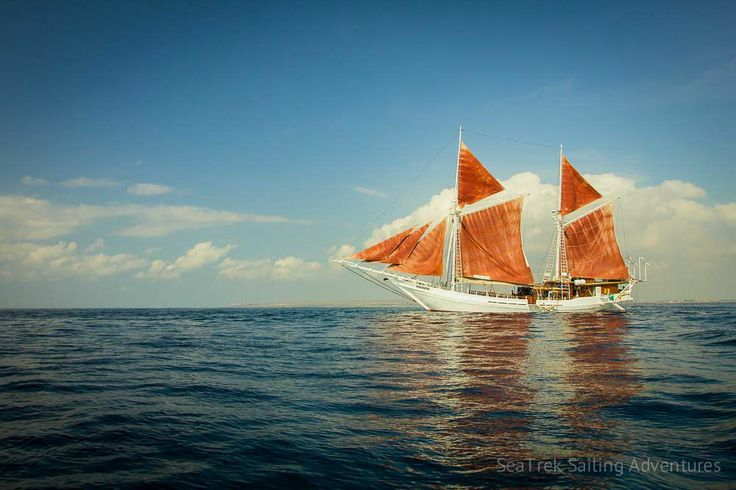 Galleries | SeaTrek Sailing Adventures - seatrek-katharina-phinisi-16