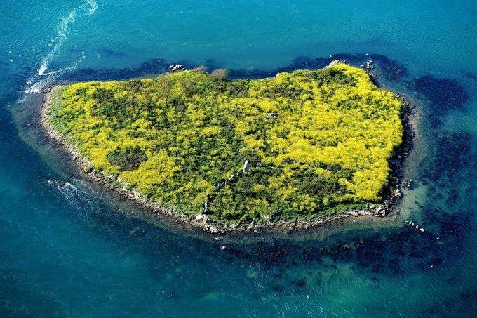 Er Lannic, dans le golfe du Morbihan. L'île comprend une double enceinte de pierres levées (cromlech). (Photo : Marc Ollivier/Ouest-France)