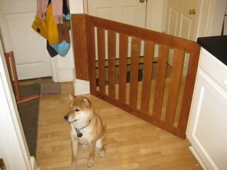 wooden dog gate on in irregular position