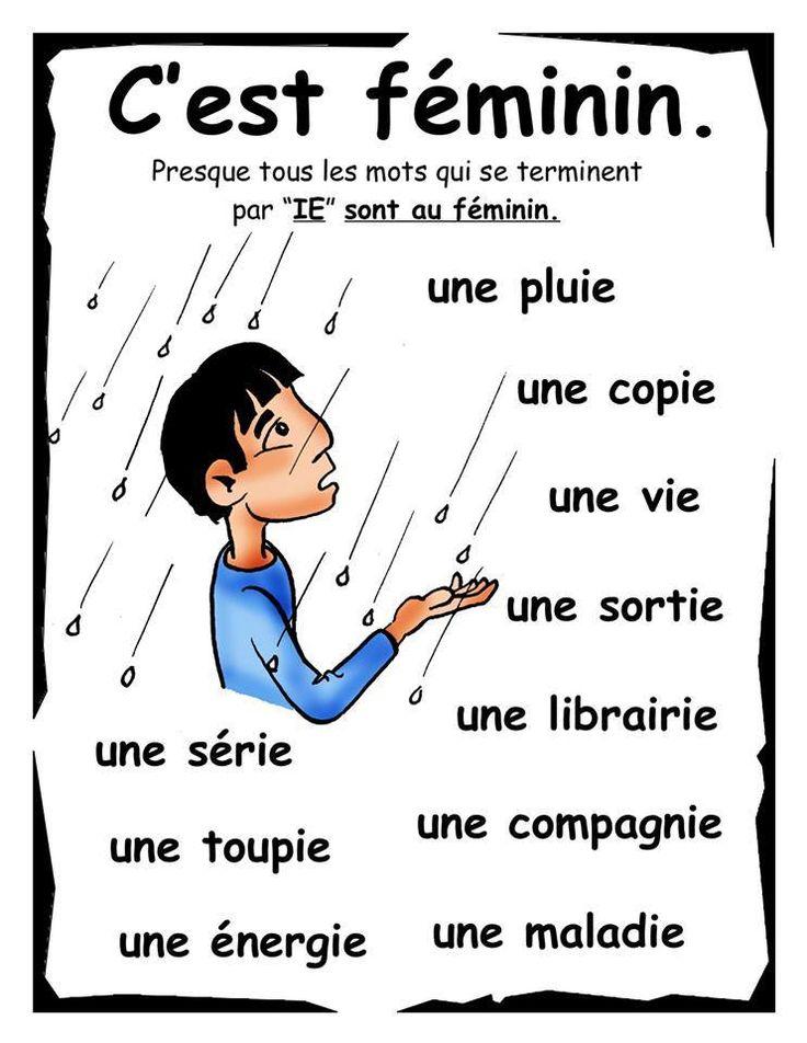 Les mots qui se terminent par 'IE' sont presque toujours FEMININS