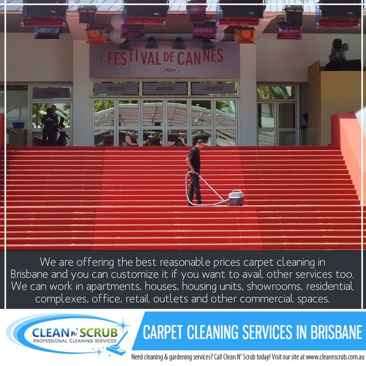 We are specialists and Clean N' Scrub team can remove stain odors from your carpet and prevent dullness in the fabric as well. With regards to the quality of products, we only use the best products and equipment.   Visit our website at www.CleanNScrub.com.au to view our services. #carpetcleaning #cleannscrub