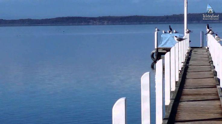 Explore the beautiful place of Waterfront Retreat At Wattle Point. #Swans  on #LakeVictoria   #InspiredbyGippsland #TourismAustralia #TourismVictoria