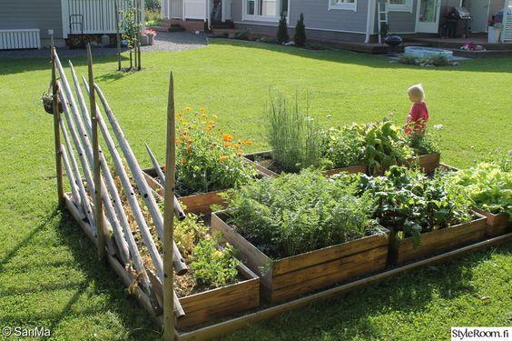 kukat,istutus,kesä,puulaatikot,kukkapenkki