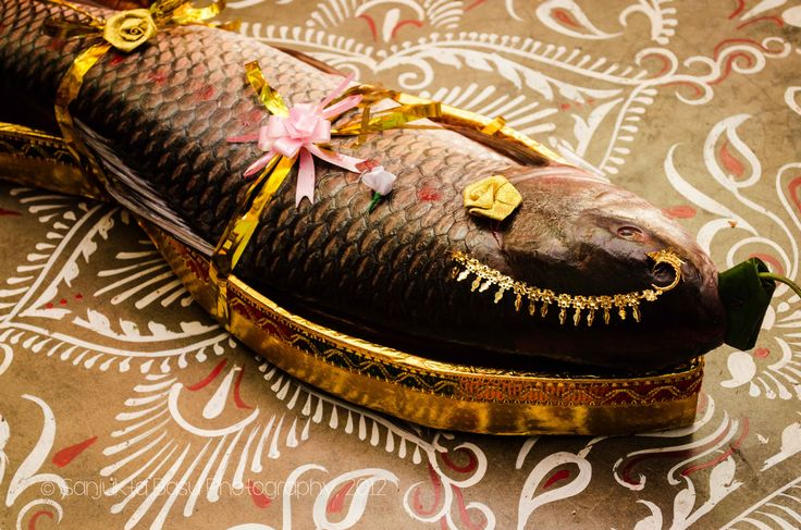 Bengali wedding: A large size Rohu fish is decorated as a bride and sent to the bride's family on the morning of the wedding day.