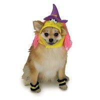 witch-dog-halloween-costume-hat-1.jpg
