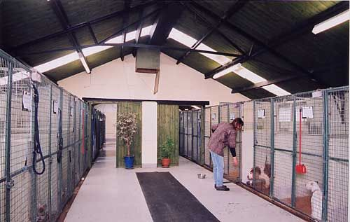 dog kennel designs - stock dogs winter shelter/house.