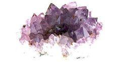 Como limpar geodos de ametista. A ametista é um cristal de quartzo brilhante e roxo. Ela é muito estimada por sua cor viva e por sua beleza. Os geodos de ametista, os quais usualmente são partidos em duas metade para visualizar os cristais em seu interior, tipicamente possuem muitas fendas que podem acumular poeira. Se o geodo de ametista for deixado em uma prateleira ...