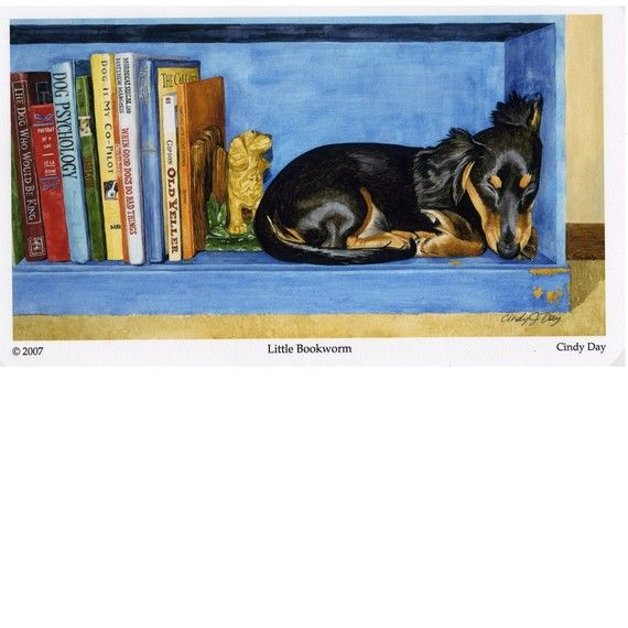 Sleeping Dachshund Giclee Print Small Size by cindydaystudio, $18.00