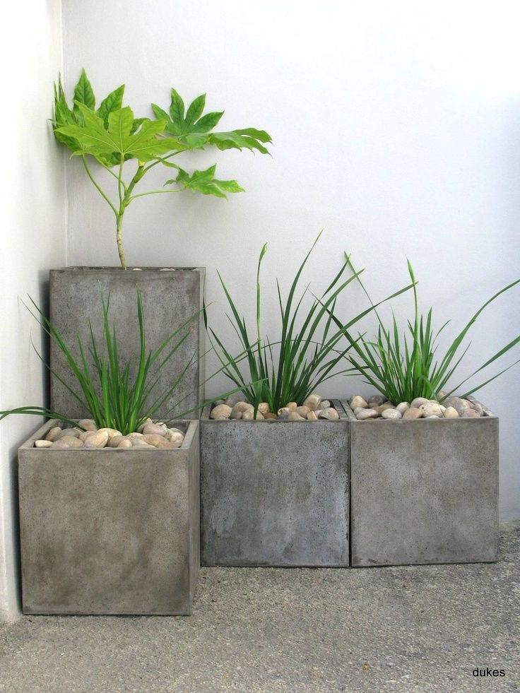 Modern Cement Plant : Solo or stacked these concrete planters are great for
