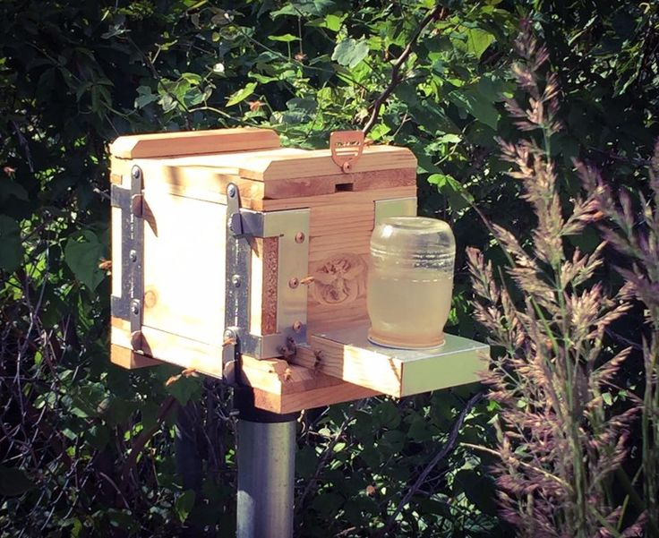 Eco bee box modern beehives bees bees pinterest for Modern hive