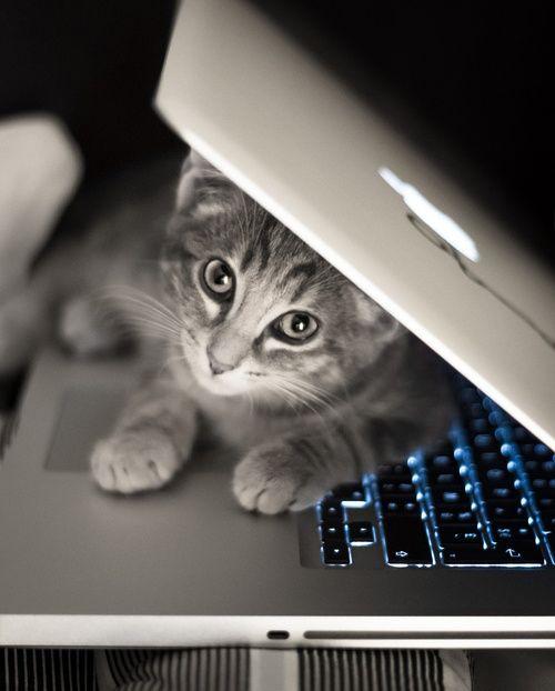 Διαγωνισμός Macbook Pro από 4 website για τους φίλους του vges.gr