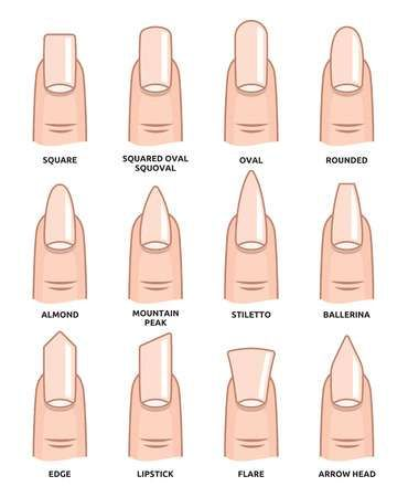 Illustration of Different nail shapes - Fingernails fashion Trends vector art, clipart and stock vectors. Image 38127090.