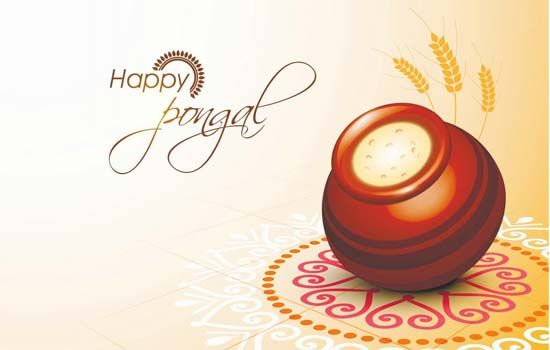 White Mango team wishes Happy Pongal #Happy #Pongal #Festival #Celebration #India #WhiteMango