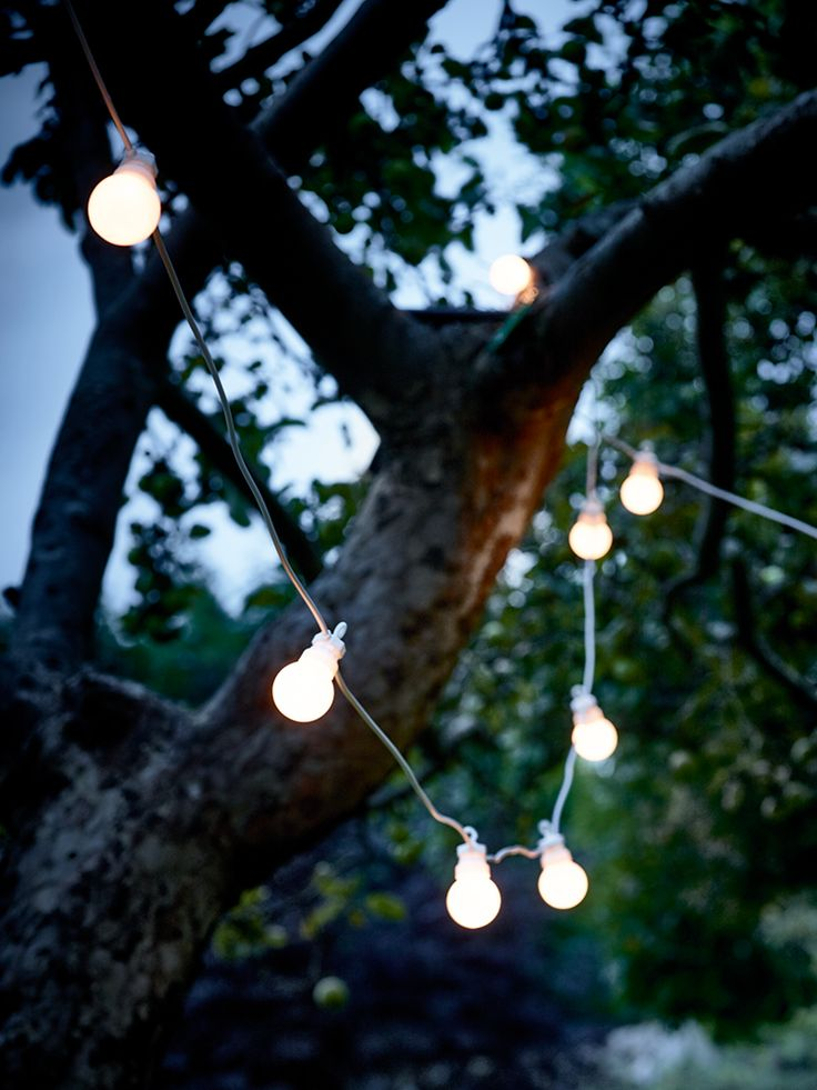 NEW White Extendable Festoon Lights - Outdoor Living.£45 for 20 lights(10m). Extension set available with 20 more lights (10m) is £35.