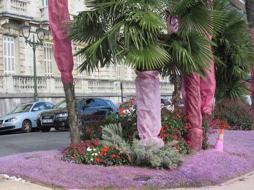 Pau - octobre rose