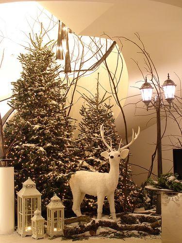 The Grove Hotel, Christmas 2009 | Ken Marten | Flickr