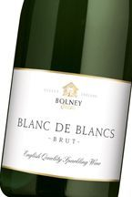 2007 Bolney Estate, Blanc de Blancs