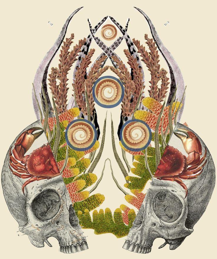 """crios"" anatomical zodiac cancer collage art by bedelgeuse"