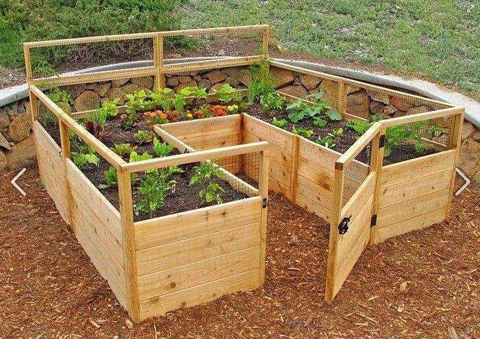 Walk in raised bed! Make out of pallets??